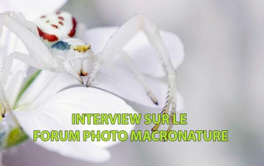 Interview sur le forum photo MacroNature
